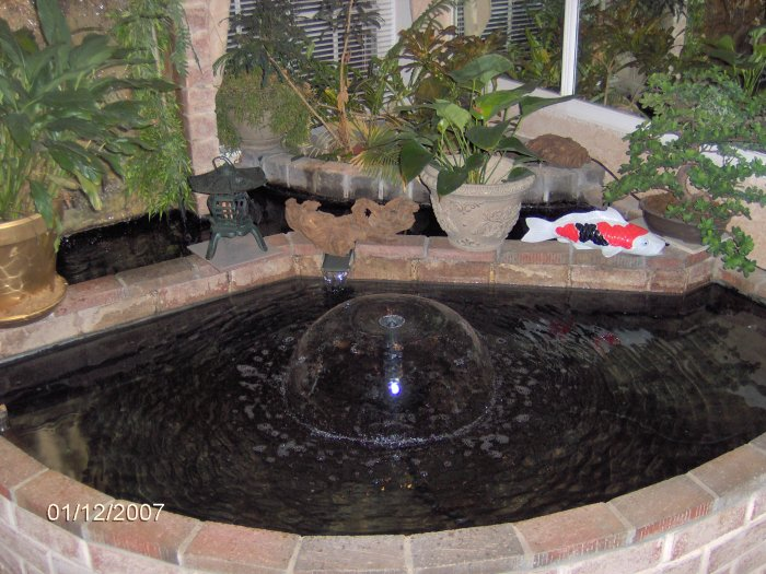 Indoor Fish Ponds : They have an indoor pond as well although there were no fish in at ...