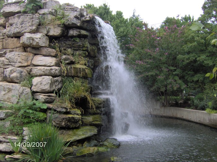 National zoo photos for Large pond waterfall